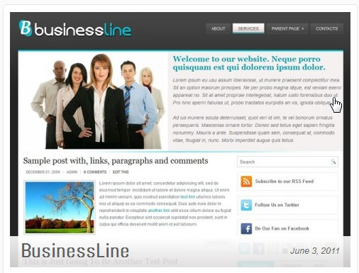 bussinesline template wordpress.jpg